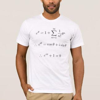 Euler erklärte: Summierung T-Shirt