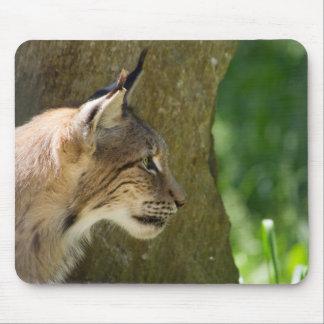 Eurasischer Luchs Mousepad