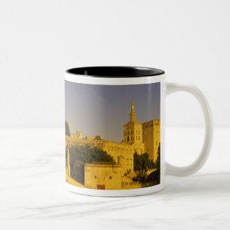 Europa, Frankreich, Provence, Avignon. Pont St., 2 Haferl