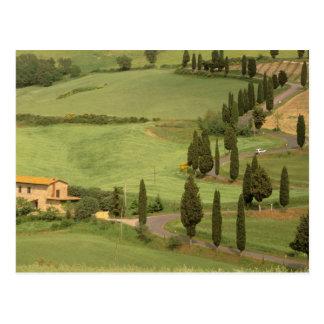 Europa, Italien, Toskana, Monticchiello. Curvy Postkarte