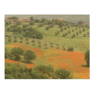 Europa, Italien, Toskana, Val D'Orcia, Monte Postkarte