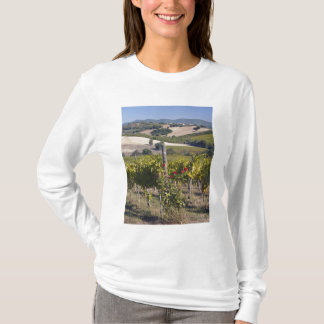 Europa, Italien, Umbrien, nahe Montefalco, T-Shirt