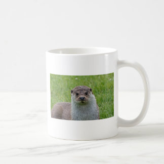 Europäischer Otter Kaffeetasse