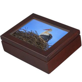 Europäischer weißer Storch, Ciconia, im Nest Erinnerungsdose