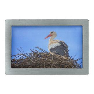 Europäischer weißer Storch, Ciconia, im Nest Rechteckige Gürtelschnalle