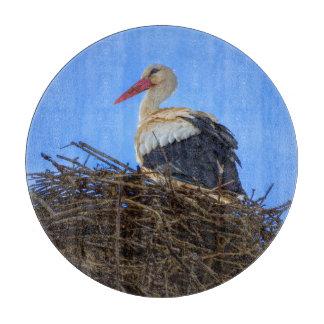 Europäischer weißer Storch, Ciconia, im Nest Schneidebrett