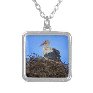 Europäischer weißer Storch, Ciconia, im Nest Versilberte Kette
