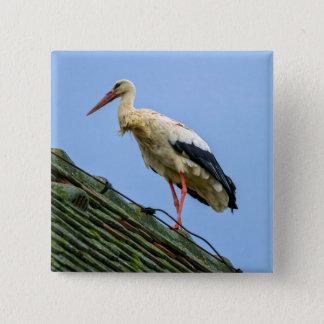 Europäischer weißer Storch, Ciconia Quadratischer Button 5,1 Cm