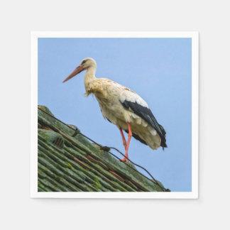 Europäischer weißer Storch, Ciconia Servietten
