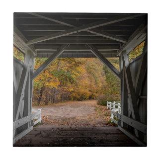 Everatt Straßen-überdachte Brücke Kleine Quadratische Fliese