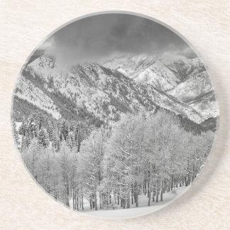 Evergreens- und Aspen-Bäume in einem Schnee Getränkeuntersetzer