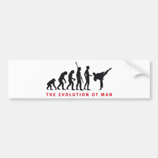evolution martial arts autoaufkleber