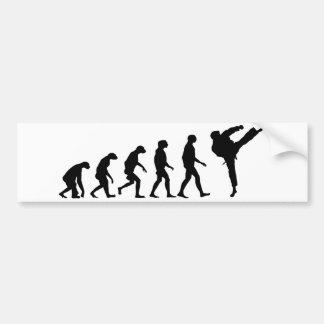 Evolution von Karate Autoaufkleber