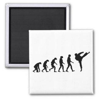 Evolution von Karate Quadratischer Magnet