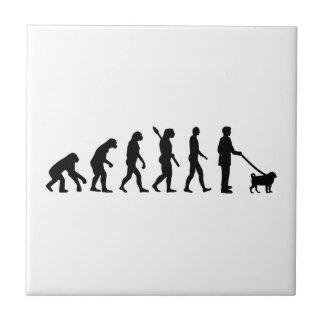 Evolutions-Mops Keramikfliese