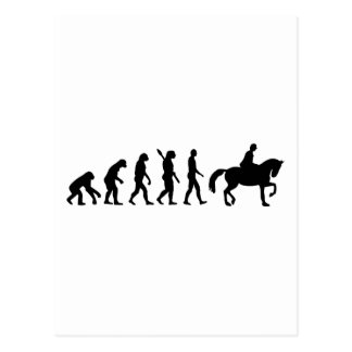 Evolutions-Reitpferd Postkarte