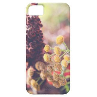ewig Blumen iPhone 5 Cover