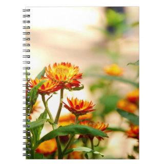 Ewig Blumen Notizblock