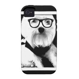 Ewok Niedliches maltesisches mit Gläsern iPhone 4/4S Hülle
