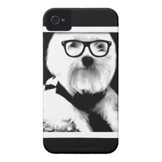 Ewok. Niedliches maltesisches mit Gläsern iPhone 4 Case-Mate Hülle