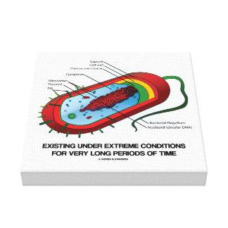 Existieren unter extreme Bedingungs-Zeit-Bakterie Leinwanddruck