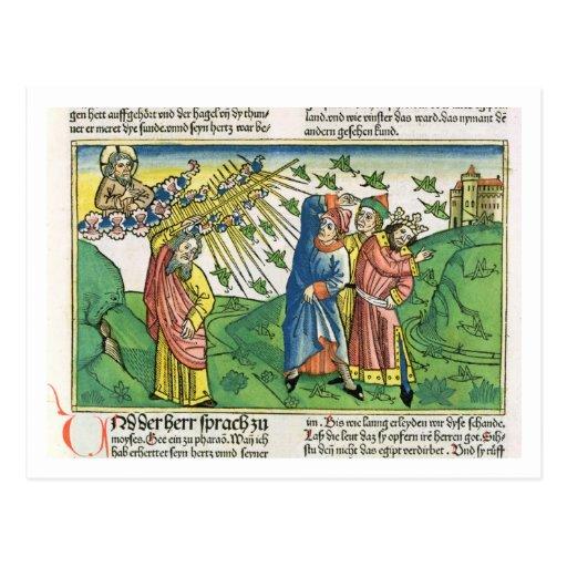 Exodus-10:1 - 20 die sieben Pest von Ägypten: der  Postkarte