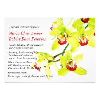 Exotische künstlerische grüne Orchideen, die Individuelle Ankündigung