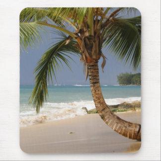 exotische Palme auf Strand Mauspads
