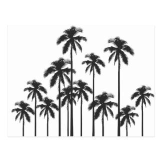 Exotische tropische Schwarzweiss-Palmen Postkarte