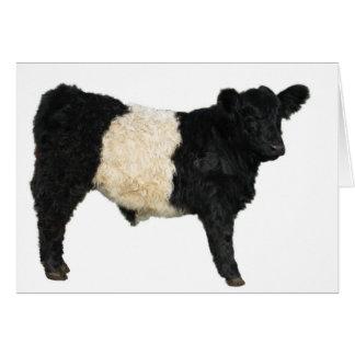 Extravagant ein Oreo? Umgeschnallte Galloway-Kuh Karte