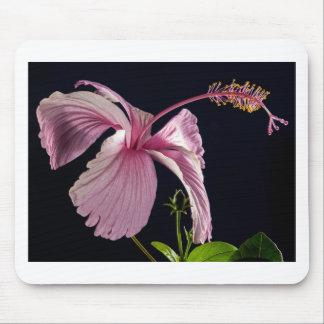 Extravagantes rosa Blumen-Blüten-Dusche Wedding Mauspad