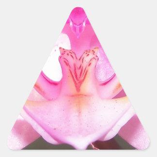 Extrem nah oben vom Innere einer Orchideen-Blume Dreieckiger Aufkleber