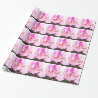 Extrem nah oben vom Innere einer Orchideen-Blume Geschenkpapier