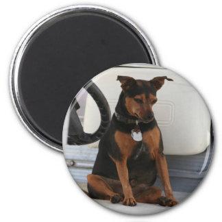 Fahren des Hundemagneten Runder Magnet 5,7 Cm