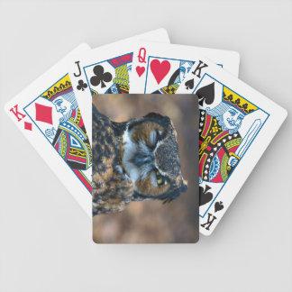Fahrrad-Karten-Schablonen-Spielkarten Bicycle Spielkarten