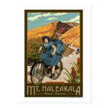 Fahrrad Mt. Haleakala reitet Hawaii Postkarten