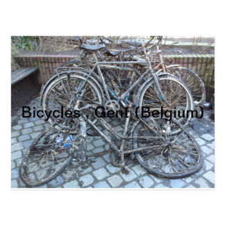 Fahrräder, Gent (Belgien) Postkarte