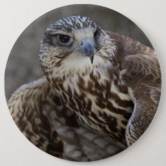 Falco cherrug runder button 15,3 cm