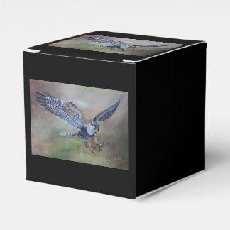 Falke-Bevorzugungs-Kasten Geschenkschachtel