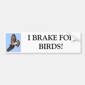 Falke, BREMSE ICH FORBIRDS! Autoaufkleber