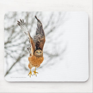 Falke, der Flug nimmt Mousepad