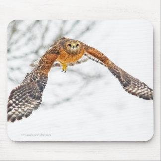 Falke im Flug Mousepad