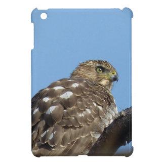 Falke iPad Mini Schale