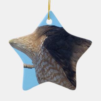 Falke Keramik Ornament