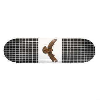 Falke Skateboarddecks