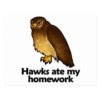 Falken aßen meine Hausaufgaben Postkarte