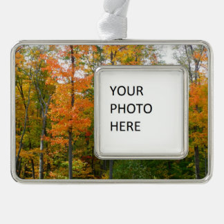 Fall-Ahornbaum-Herbst-Natur-Fotografie Rahmen-Ornament Silber