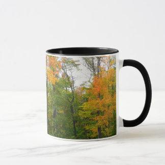 Fall-Ahornbaum-Herbst-Natur-Fotografie Tasse