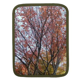 Fall-Baum iPad Sleeve