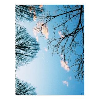 Fall-Baum-Skyline Postkarte
